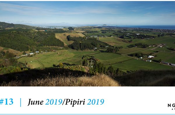 Issue 13 – June 2019